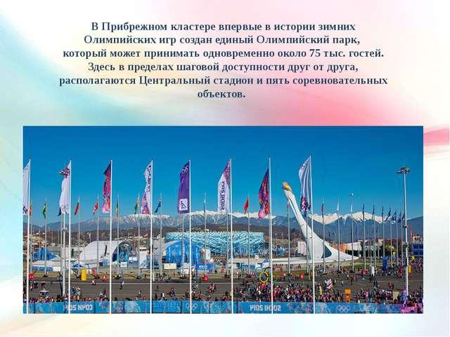 В Прибрежном кластере впервые в истории зимних Олимпийских игр создан единый...