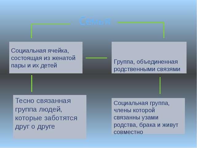 Семья Социальная ячейка, состоящая из женатой пары и их детей Группа, объедин...