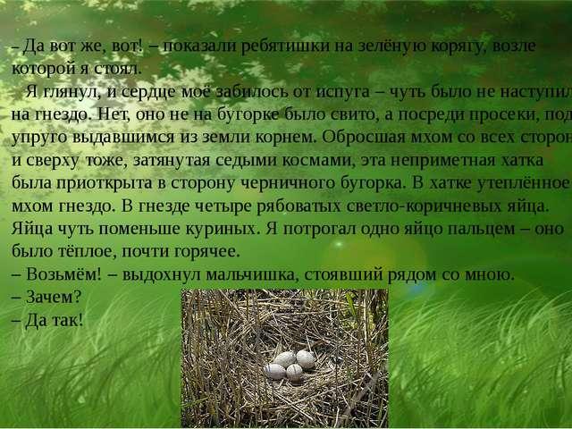 – Да вот же, вот! – показали ребятишки на зелёную корягу, возле которой я ст...