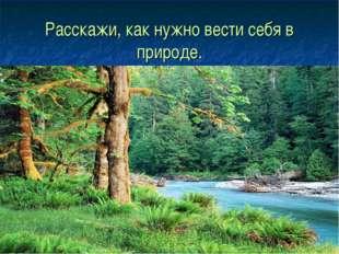 Расскажи, как нужно вести себя в природе.