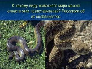 К какому виду животного мира можно отнести этих представителей? Расскажи об и
