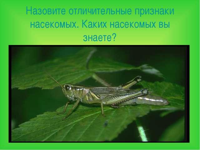 Назовите отличительные признаки насекомых. Каких насекомых вы знаете?
