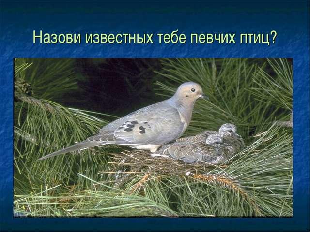 Назови известных тебе певчих птиц?