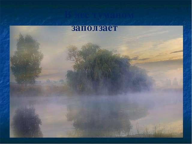 В лес туманом заползает