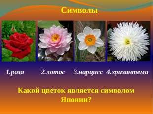 1.роза  2.лотос 3.нарцисс 4.хризантема  Символы Какой цветок является симв