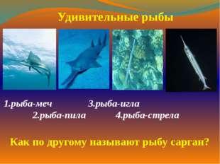 1.рыба-меч  3.рыба-игла  2.рыба-пила 4.рыба-стрела  Удивительные рыбы
