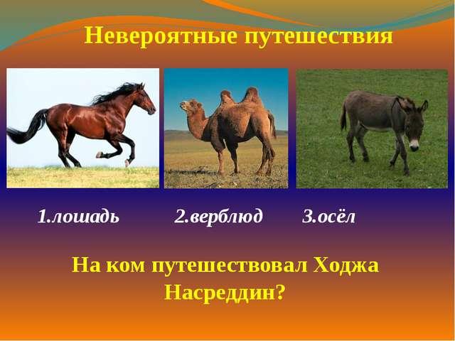 1.лошадь 2.верблюд 3.осёл  Невероятные путешествия На ком путешествовал Х...