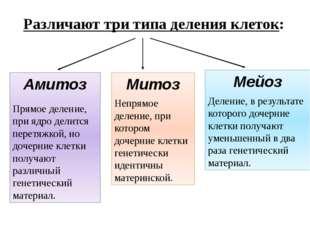 Различают три типа деления клеток: Амитоз Прямое деление, при ядро делится пе
