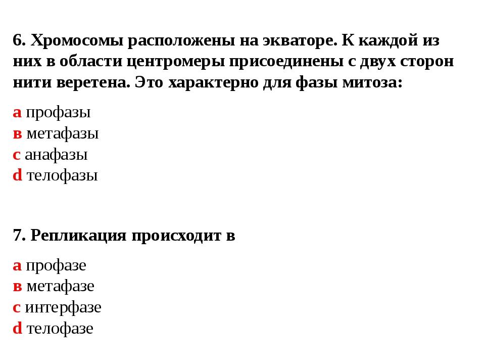 6. Хромосомы расположены на экваторе. К каждой из них в области центромеры п...