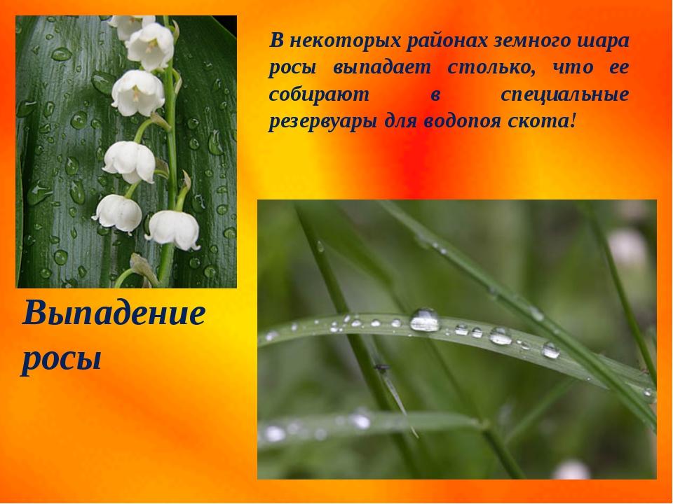 Выпадение росы В некоторых районах земного шара росы выпадает столько, что ее...