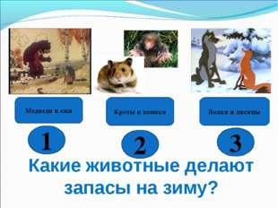 Какие животные делают запасы на зиму? Волки и лисицы Кроты и хомяки Медведи и
