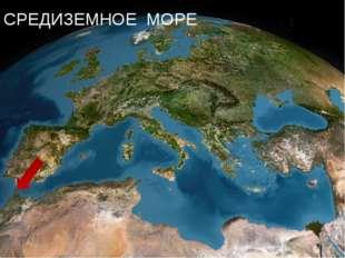 Море омывающее берега Африки, Азии и Европы. СРЕДИЗЕМНОЕ МОРЕ