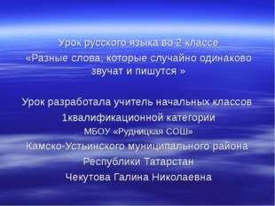 Урок русского языка во 2 классе «Разные слова, которые случайно одинаково зв