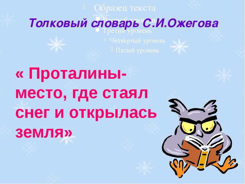 Толковый словарь С.И.Ожегова « Проталины-место, где стаял снег и открылась зе...