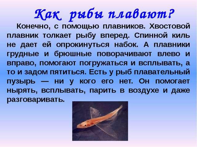 Как рыбы плавают? Конечно, с помощью плавников. Хвостовой плавник толкает рыб...