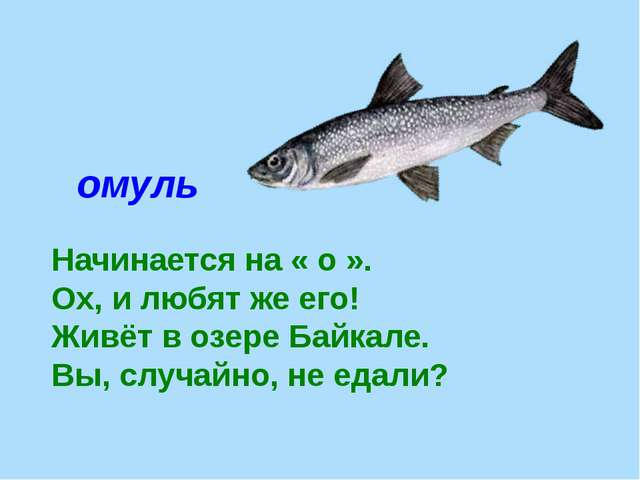 омуль Начинается на « о ». Ох, и любят же его! Живёт в озере Байкале. Вы, слу...