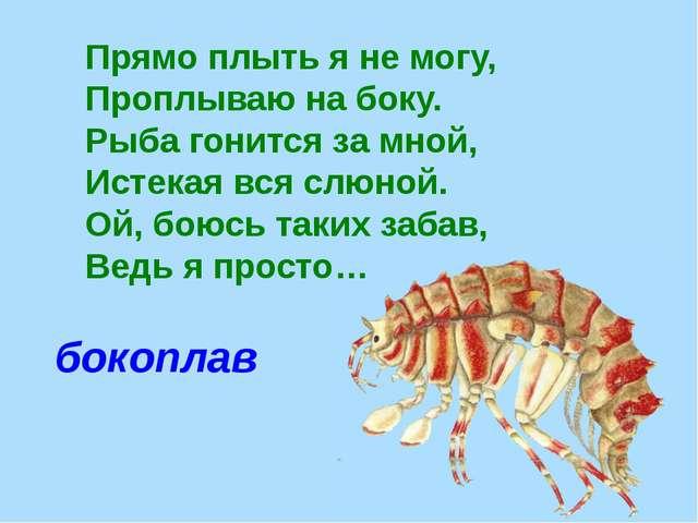 Прямо плыть я не могу, Проплываю на боку. Рыба гонится за мной, Истекая вся с...