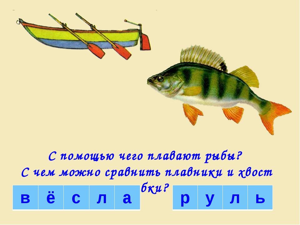 С помощью чего плавают рыбы? С чем можно сравнить плавники и хвост рыбки? в ё...