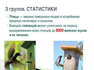 Птицы — верные помощники людей в истреблении вредных насекомых и грызунов. Вы