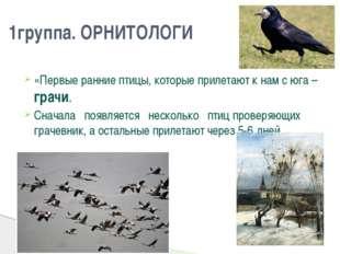 «Первые ранние птицы, которые прилетают к нам с юга – грачи. Сначала появл