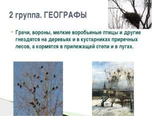 Грачи, вороны, мелкие воробьиные птицы и другие гнездятся на деревьях и в кус