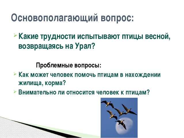 Какие трудности испытывают птицы весной, возвращаясь на Урал? Проблемные вопр...