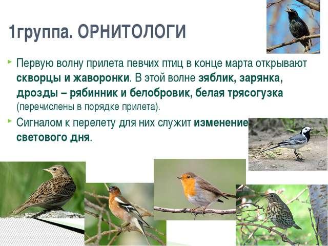 Первую волну прилета певчих птиц в конце марта открывают скворцы и жаворонки....