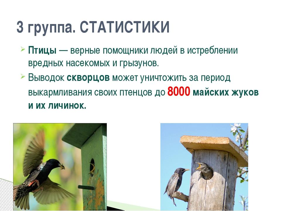 Птицы — верные помощники людей в истреблении вредных насекомых и грызунов. Вы...