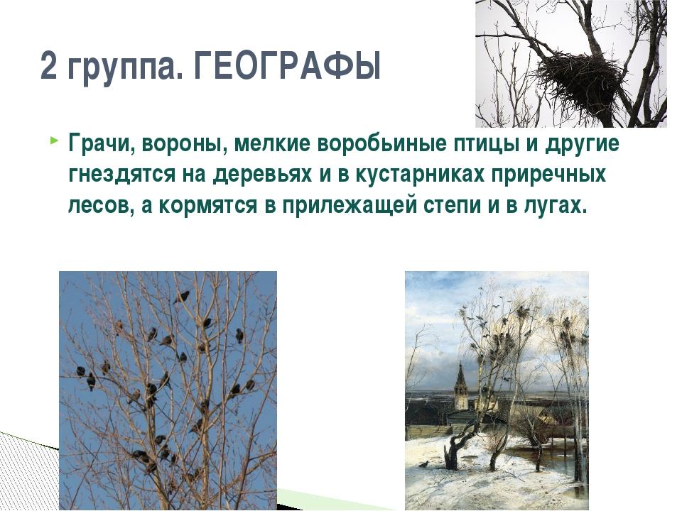 Грачи, вороны, мелкие воробьиные птицы и другие гнездятся на деревьях и в кус...