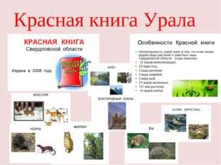 Красная книга Урала
