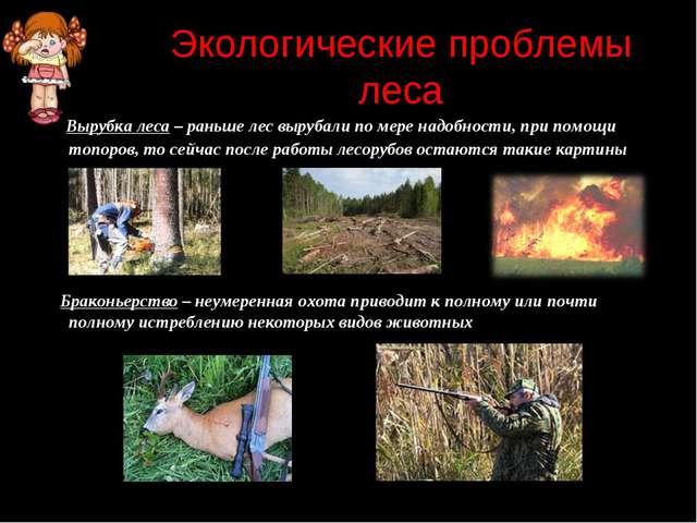 Экологические проблемы леса Вырубка леса – раньше лес вырубали по мере надобн...