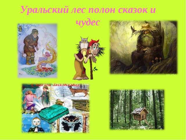 Уральский лес полон сказок и чудес