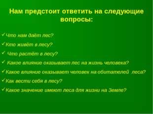 Нам предстоит ответить на следующие вопросы: Что нам даёт лес? Кто живёт в ле