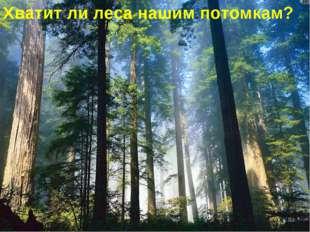 Хватит ли леса нашим потомкам?