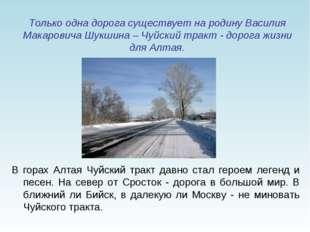 Только одна дорога существует на родину Василия Макаровича Шукшина – Чуйский