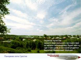Панорама села Сростки Первым пунктом нашего виртуального путешествия по музею