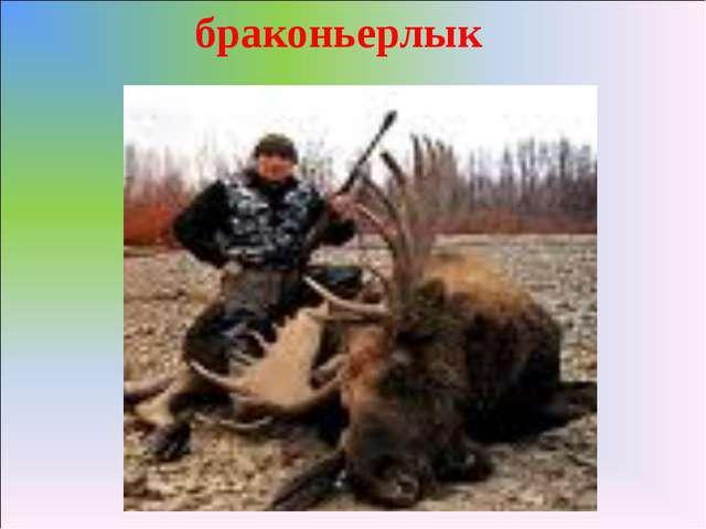 браконьерлык