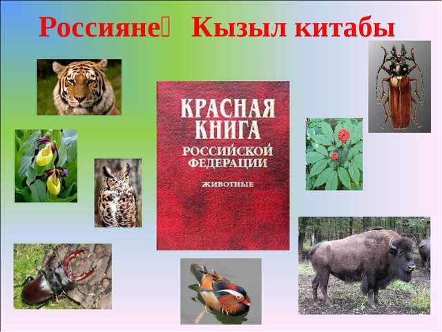 Россиянең Кызыл китабы