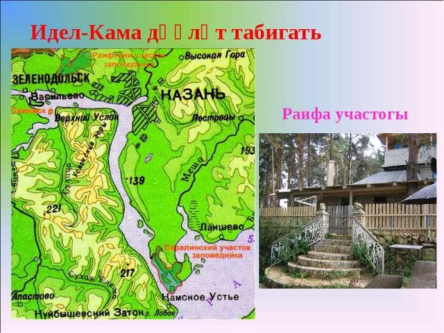 Идел-Кама дәүләт табигать тыюлыгы Раифа участогы