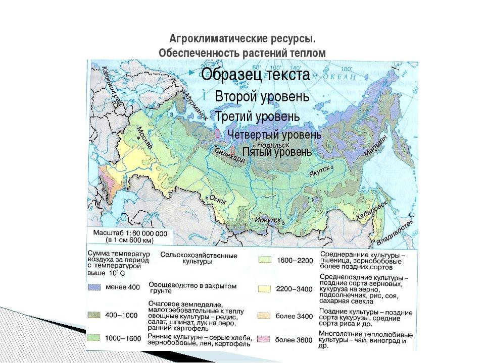 Агроклиматические ресурсы. Обеспеченность растений теплом