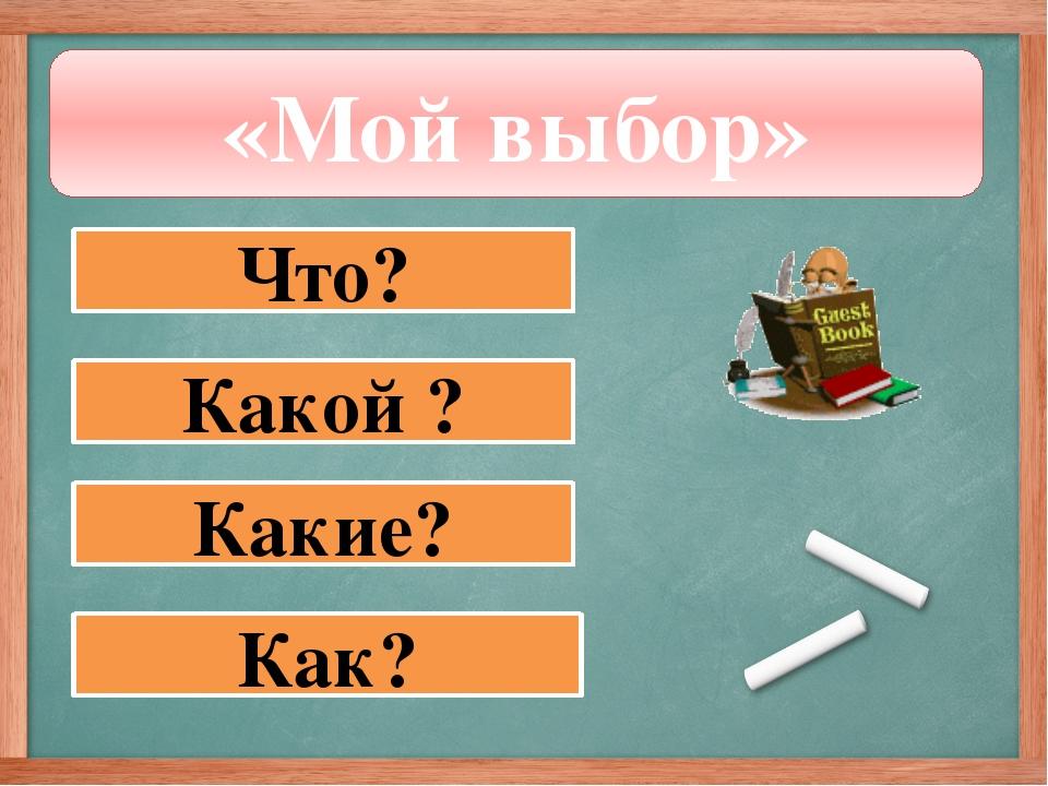 «Мой выбор» Что? Какой ? Какие? Как?