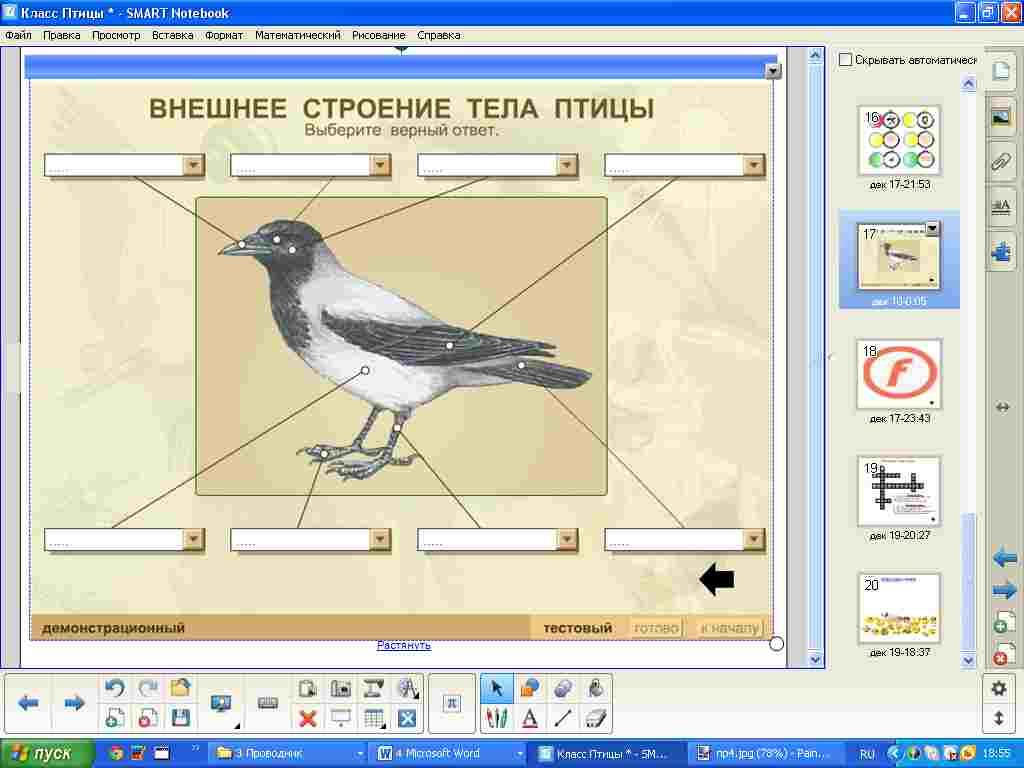 hello_html_26739316.jpg