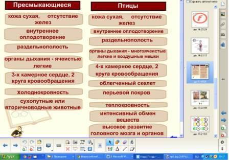 hello_html_37cf8c14.jpg