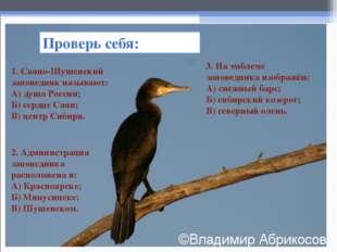 Проверь себя: 1. Саяно-Шушенский заповедник называют: А) душа России; Б) серд