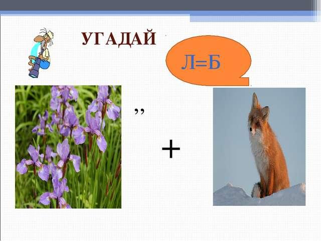 ,, Л=Б + УГАДАЙ