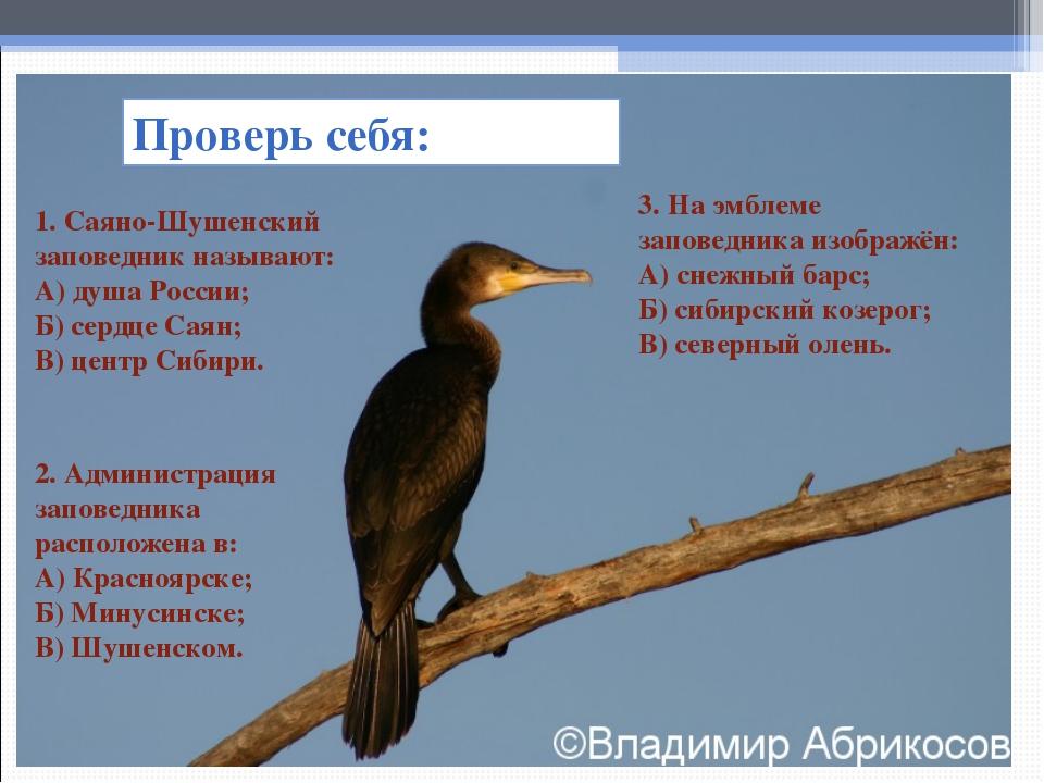Проверь себя: 1. Саяно-Шушенский заповедник называют: А) душа России; Б) серд...