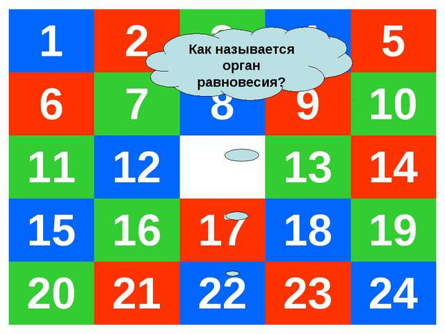 Как называется орган равновесия? 12345 678910 11121314 1516171...