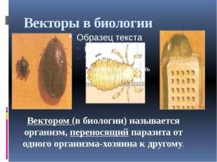 Векторы в биологии Вектором (в биологии) называется организм, переносящий пар