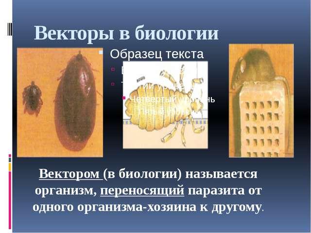 Векторы в биологии Вектором (в биологии) называется организм, переносящий пар...