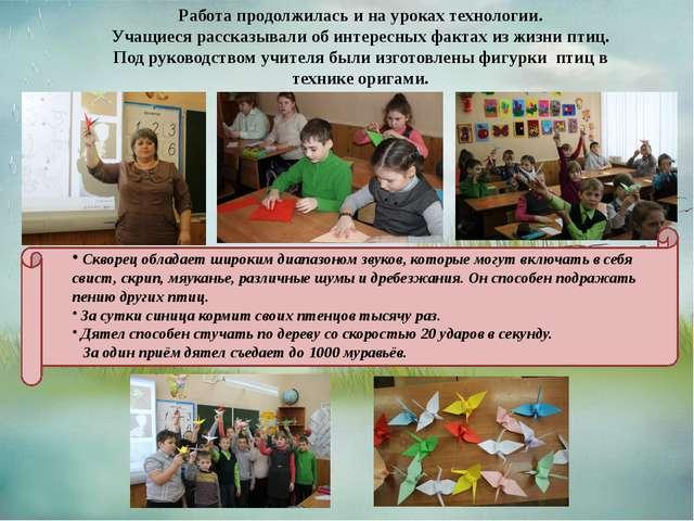 Работа продолжилась и на уроках технологии. Учащиеся рассказывали об интересн...